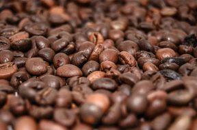 gute Kaffeebohnen statt bunte Kapseln auf gadgetzone.de