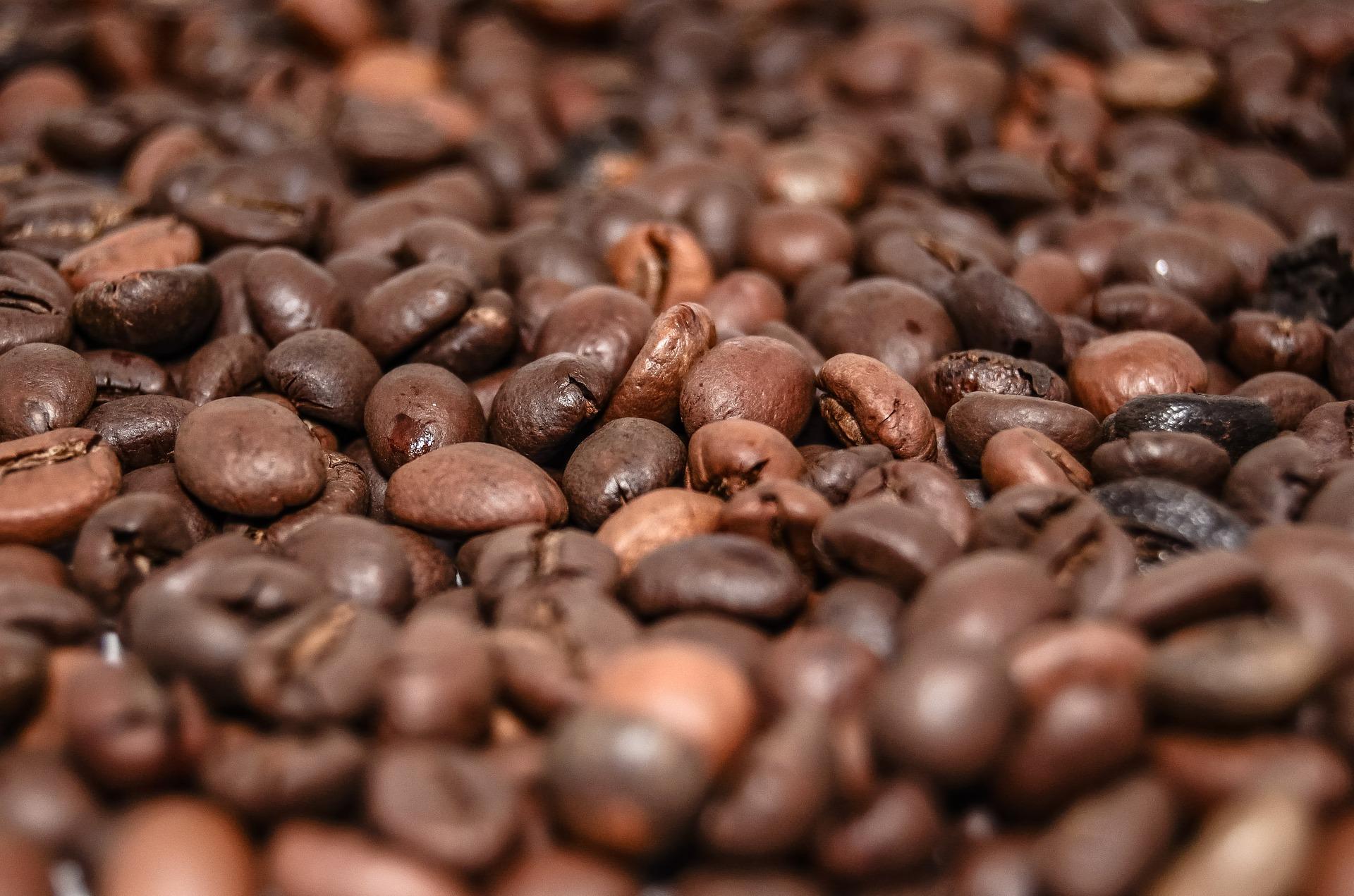 gute Kaffeebohnen statt bunte Kapseln