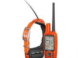 GPS für Hunde auf gadgetzone.de