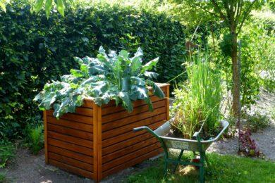 Hochbeet für Gemüse auf gadgetzone.de